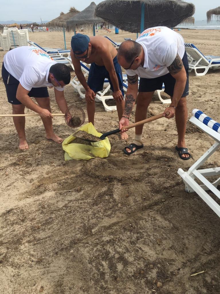 limpieza de nuestras playas en valencia