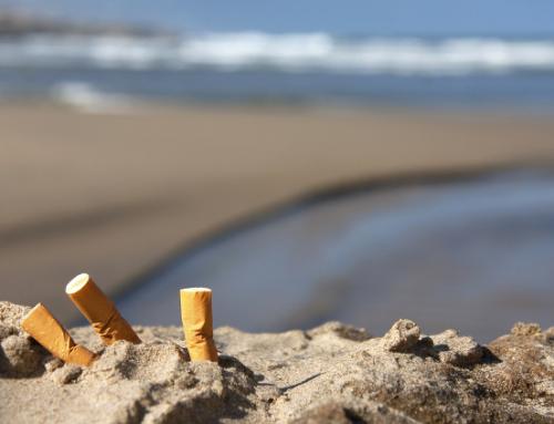 """Campaña """"Limpiemos nuestras playas de Valencia"""""""